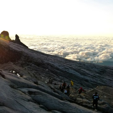 Mount Analogue   (la metafora della montagna)